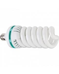 Westcott Basics 85w Daylight Balanced Flourescent Lamp 220v (418A)