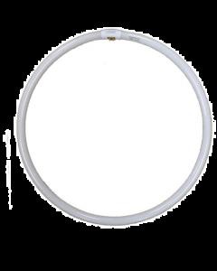 Dorr Replacement Bulb For Dorr Foto SL-45 Studio Ring Beauty Light